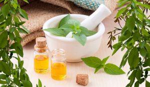 Einführung in die Aromatherapie - Seminar in Berlin