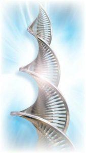 DNA Reconnection Seminar in Berlin