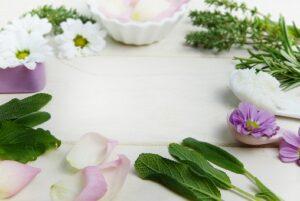 Aromatherapie Beratung in Berlin