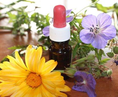 Ganzheitliche Aromatherapie Beratung in Berlin